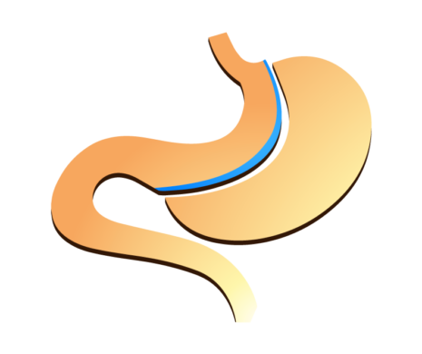 NJBC-stomach-graphic-smaller.png